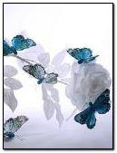 Rose blanche et papillons