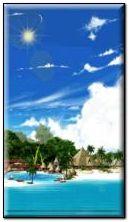 Tropic Paradise 8