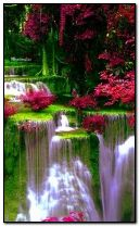 مشهد الطبيعة