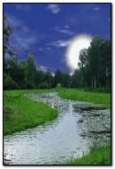 Night River 2