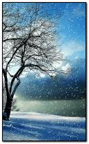 Día de invierno