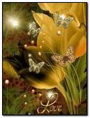 -flower butterfly - 240x320