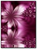 animated pink flower