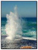 waves-sea