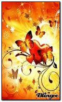 butterfly autumn