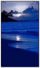 Beach night