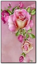 Цветочная роза