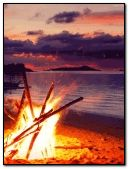 bonfire at beach.