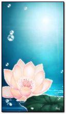 Ładny kwiatek