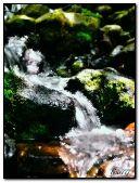 sparkling stream