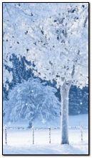 animowany śnieg zimowy