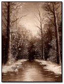 Brown winter
