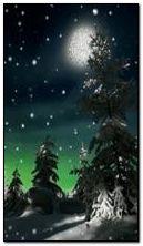 piękna zimowa noc