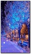 Musim sejuk yang indah