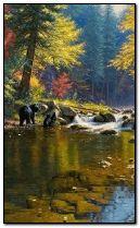 fiume autunnale con orsi