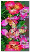 Çiçekler Fly