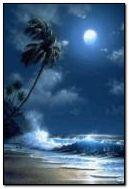 Night Beach 5