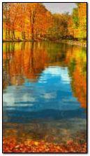 Sonbahar nehir