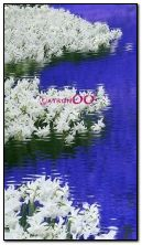 animated flower garden and Lake HDi51