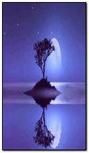 चंद्र प्रकाश