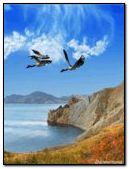 lake-of-sea-animated-screensaver