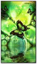 mariposa world