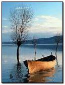 barca en agua