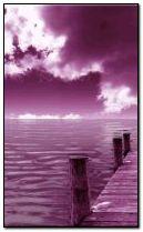 紫色的大海