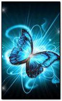 butterfly 240x400