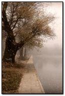 Les jours de pluie peuvent aussi être beaux