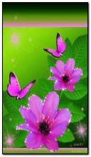 Blume und Schmetterlinge