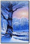 Фіолетовий зимовий день