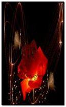 Glitter Rose240x400