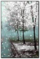 Rain with snow