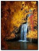 Anim forest waterfall