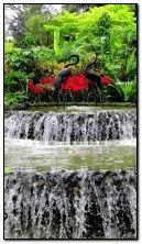 đài phun nước trong công viên