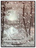snowfall in woods