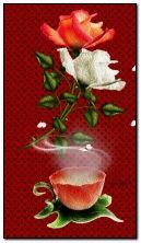 커피와 장미