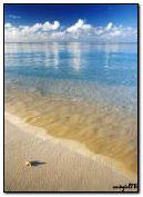 Plaża animowana