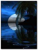 BEAUTIFUL NIGHT ONE