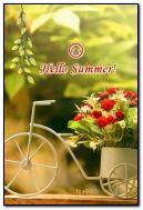 Xin chào mùa hè :)