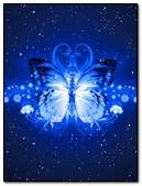 Abst Butterfly