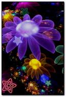Blumen Abst