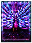 Peacock Neon Fantasy