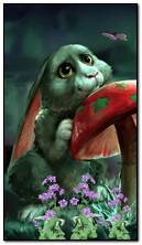 प्यारा खरगोश