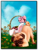 The Pug With Rabbit Ears