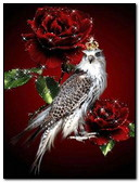 Falcon In The Roses