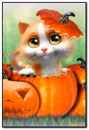 Cat In To Pupkin