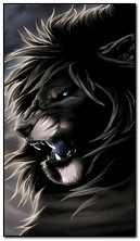 Lion Black & White