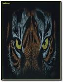 Ojos De Tigre B